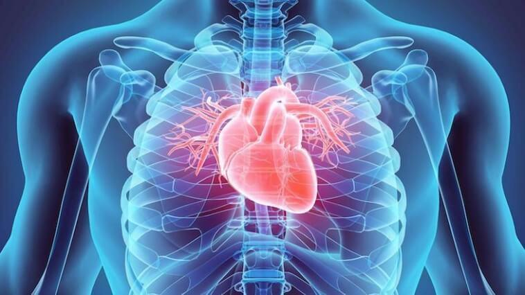 καρδιολογικό check up
